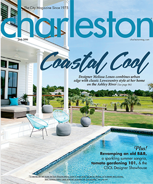 Domain Interiors Charleston Magazine Coastal Cool